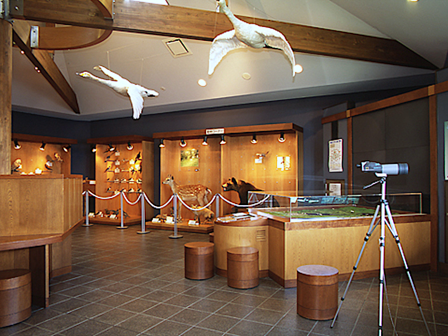 浜頓別クッチャロ湖水鳥観察館