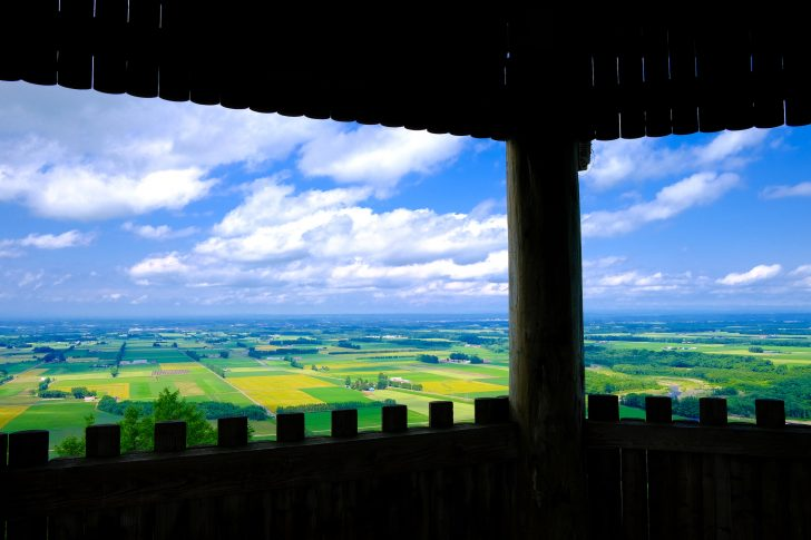 新嵐山スカイパーク展望台
