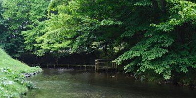 内別川(ナイベツ川湧水)