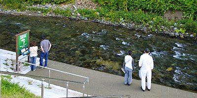 オンネベツ川鮭鱒観覧施設